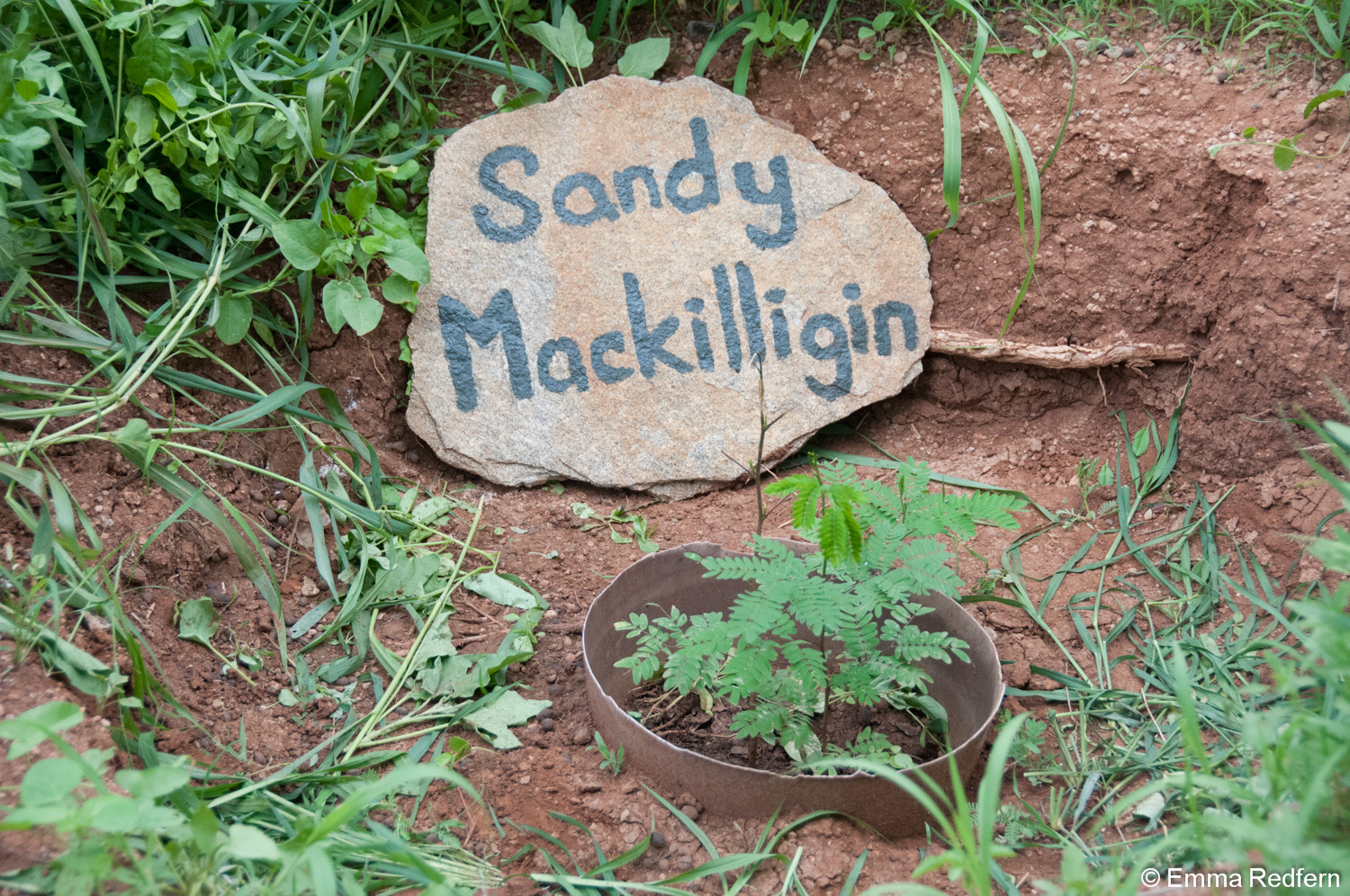 Sandy Mackilligin