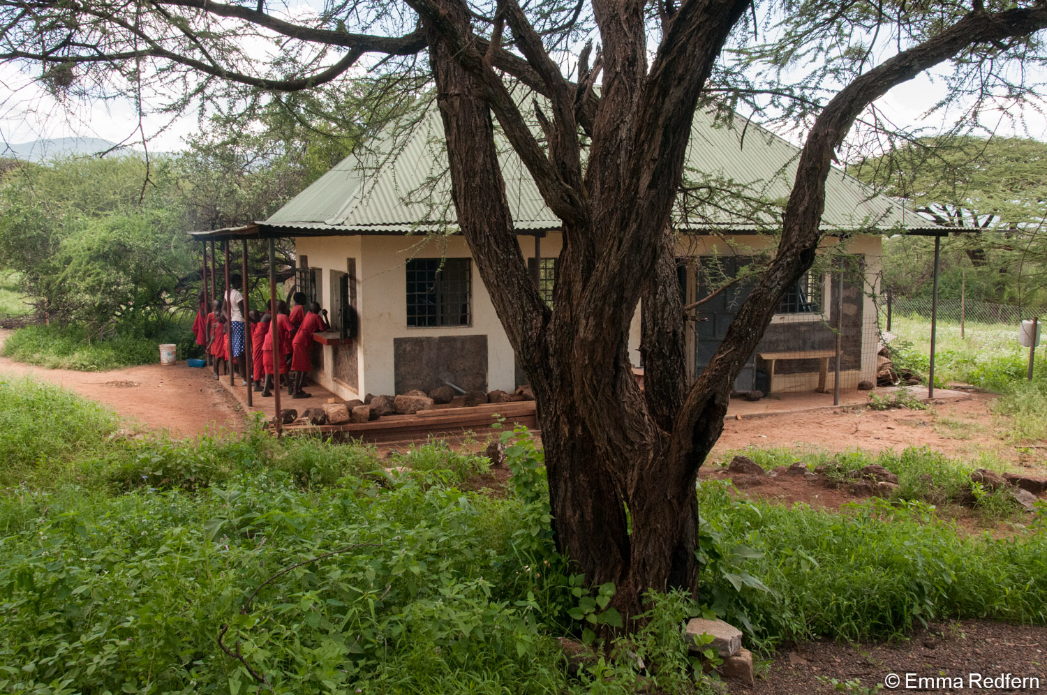 The school kitchen surrounded by greenery