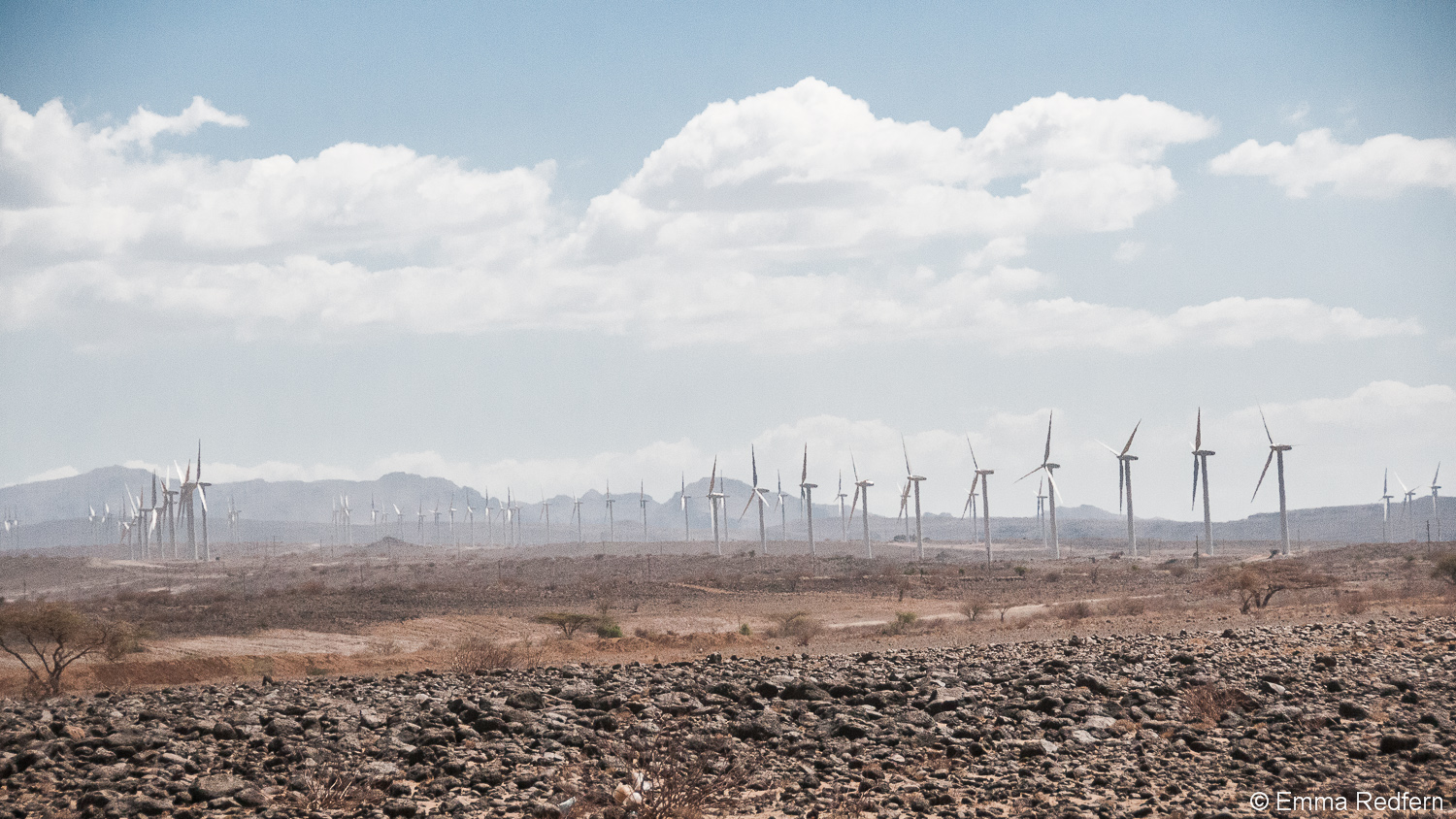 Line after line of wind turbines march into the distance at Africa's largest wind farm near Lake Turkana