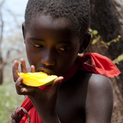 Mangoes are Pretty Good Too!