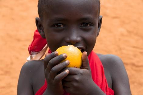 Oranges are Great!