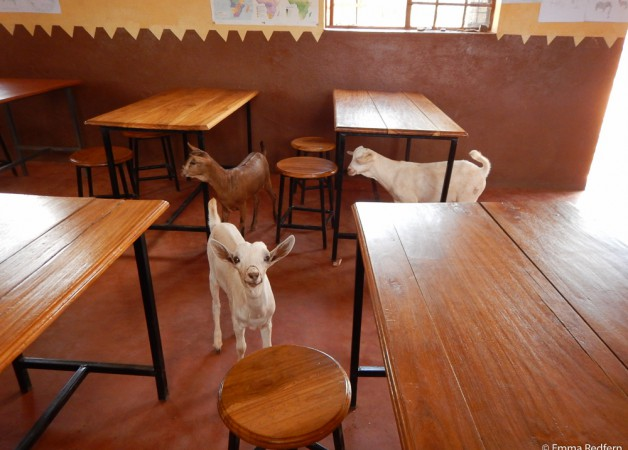 Kids investigating the classroom!