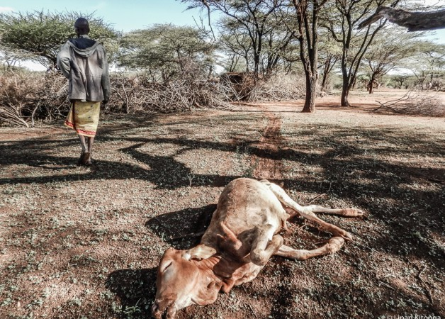 Hard times in Northern Kenya; the long and the short of it.