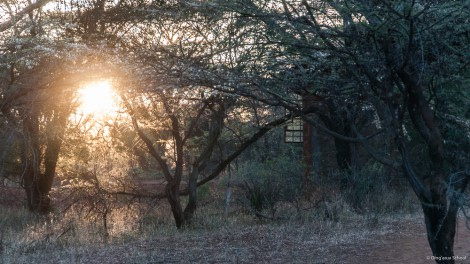Sunrise at Olng'arua School