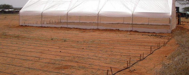 New Farm Kit to Educate and Feed Children in Kipsing