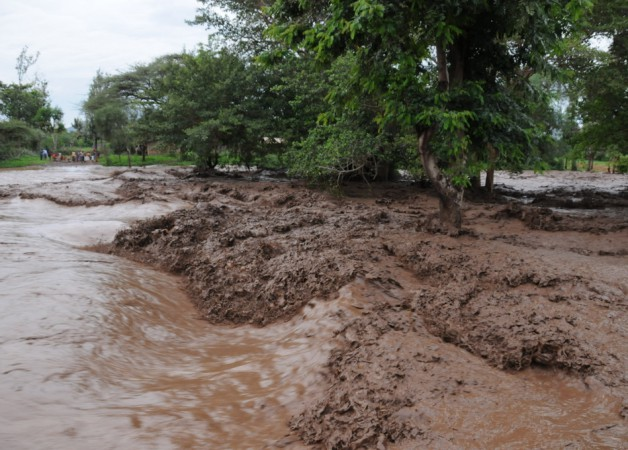 The Rains Have Come to Northern Kenya